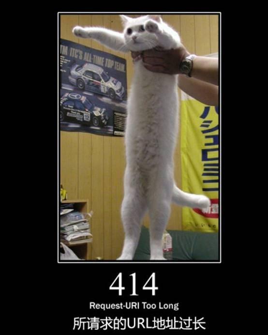 萌猫教你HTML错误代码的含义